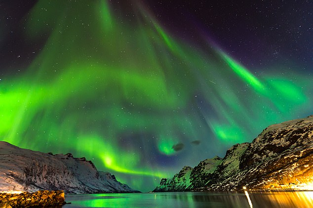 See the Northern Lights with Ranulph Fiennes – join the legendary explorer on a cruise of Norway